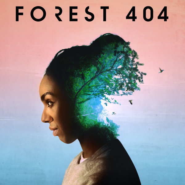 Forest 404